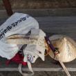 3月にほぼ歩き遍路、四国八十八ヶ所巡りに行ってきました。
