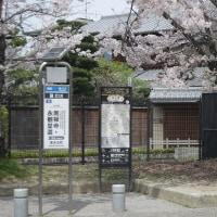 南禅寺・永観堂道のバス停