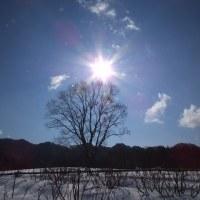 17年1/21~木曽馬牧場~一周