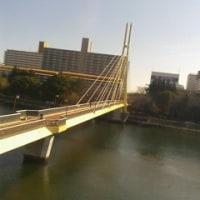 今日は東京モノレール♪