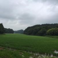 NPO匝瑳プロジェクト!