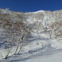 空沼岳(1251m)~金山林道から