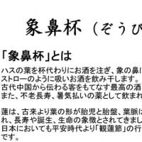 駅からハイク① 大賀ハス