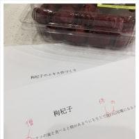 【4/22出発】韓流美膳の旅・春のソウル編 最終のご案内メールをお送りしました