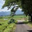 大峠から流石山~三倉山~唐沢山へと県境尾根を縦走