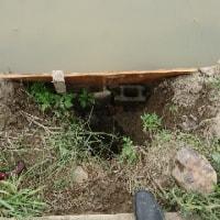 田んぼ、出水口修復
