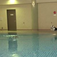 泳ぎたいので