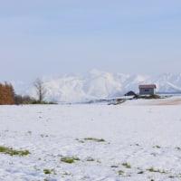 すっかり冬景色