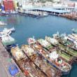 <韓国報道>韓日漁業交渉決裂で釜山の漁師ら悲鳴 両国関係悪化のあおり
