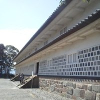 雑感・日記 -125- 秋めいて
