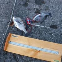 年末釣り大会