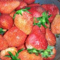 クズイチゴ食べ放題♪♪