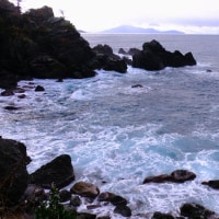 寒風の越前海岸