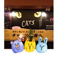 劇団四季 ミュージカル『CATS』1月9日