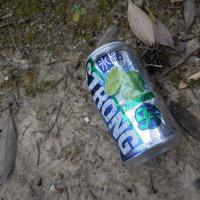 缶1個、たばこの空箱2個収集、レジ袋でゴミ拾い&街美化とパトロール