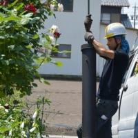 煙突掃除と薔薇の庭