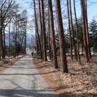 大町温泉郷「薬師の湯」、「宮の森自然園」と「鹿島橋からの北アルプス」。(3月25日 長野県大町市)