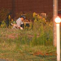 日の出前から草刈り