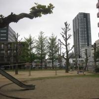 新潟駅南のぞみ公園から