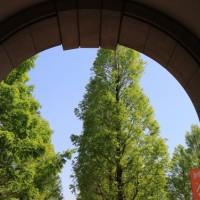 神戸フルーツ・フラワーパーク@道の駅