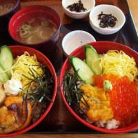 京都 & 福井の旅 7 東尋坊