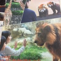 秋だ!動物園まつり! 静岡市立日本平動物園 絶賛開催中 動物園GO!