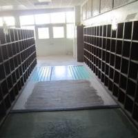 学校写真館《3月29日(水)》