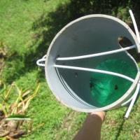良き道具にこそ匠あれ06  - 自作のグアバ収穫器 -