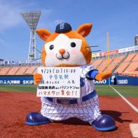岩本さんの衣装が「呼び捨てツアー」