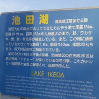 池田湖  イッシー発見⁉