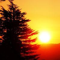 卯辰山の夜明けは春?