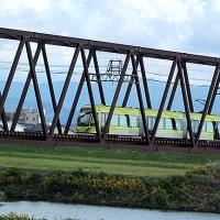 ふくい健康の森のイチョウと近くの鉄橋など
