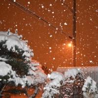 雪かき 頑張りました!