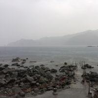 21日 今朝の西伊豆安良里&黄金崎のダイビング情報!