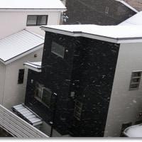 この冬はじめて積雪の大阪です