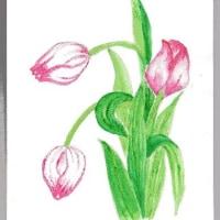 春を 代表する 可愛いお花・・・
