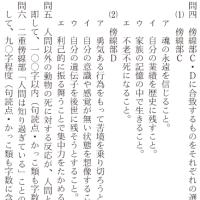 国語・現代文 gn311