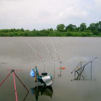バラトの鮒釣り