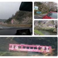 弥栄のほうえい堂→本郷桜街道