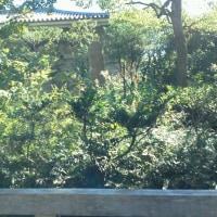 鎌倉国宝館の新企画