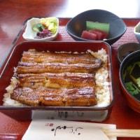 いづ喜さんでうなぎ重定食や春の篭盛御膳(館山市)