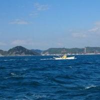出港 シラス漁 最盛期