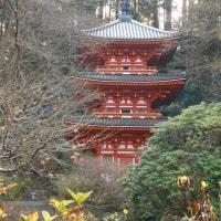 岩船寺から浄瑠璃寺へ