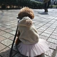 2月Pardoの足跡☆
