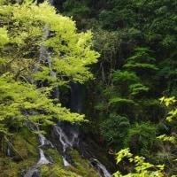 R425号沿いの滝~幻の五新鉄道