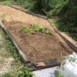 土は食糧が作れます