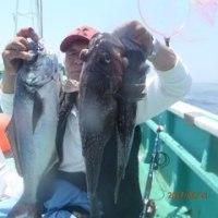 5月21日、真ゾイ調査、トップ15~9匹、凪よ活発、順調に釣れました、今日も一日楽しい釣りができました、他、マダラ、目鯛、沖メバル、イシナギ、餌、サンマ、錘200号、小名浜沖。