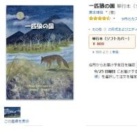 一匹狼の国 amazon発売記念セール