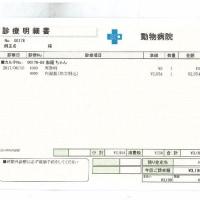 伽羅の肝炎&脳卒中&甲状腺障害日記(26)