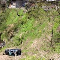 コンニャク芋と崖から落ちた車。(4/24*月)